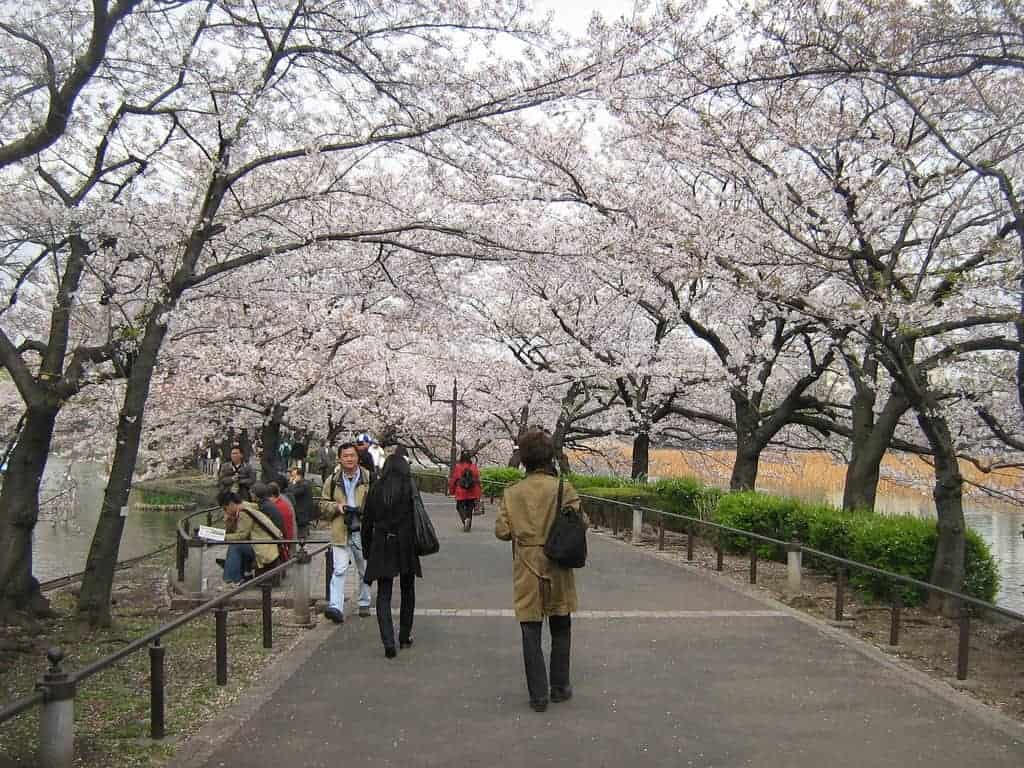 Ueno Park jepang harga tour ke Jepang 2016 murah dari medan biaya tour ke jepang