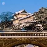 Biaya Liburan Ke Jepang