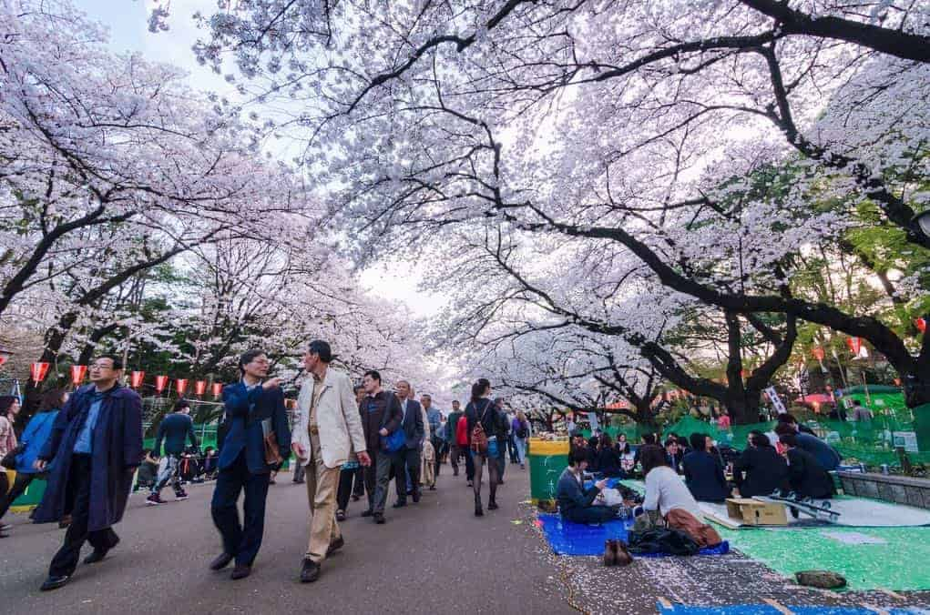 Ueno Park jepang tokyo tour murah ke jepang 2016 tour murah ke jepang dan korea tour murah ke jepang desember