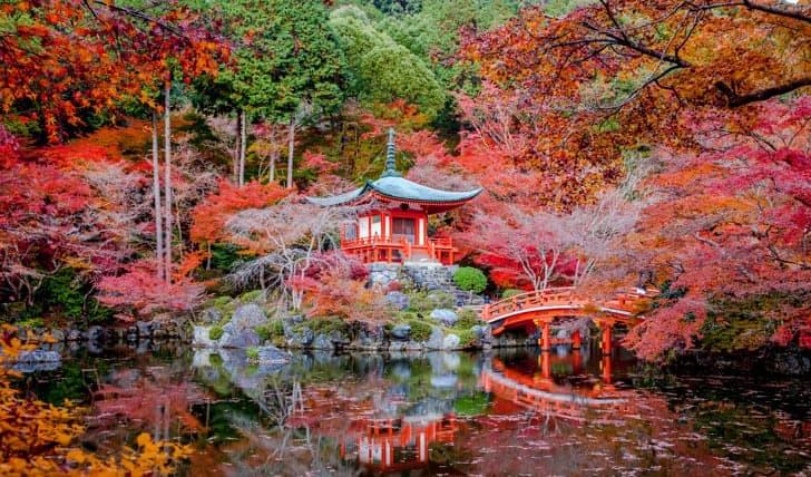 Paket tour Kyoto 1 hari dengan mobil pribadi