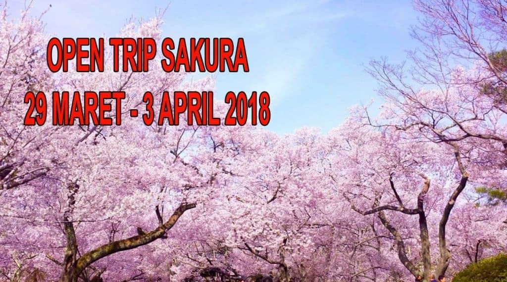 Paket Tour Wisata Jepang Musim Sakura 29 Maret - 3 April 2018 1