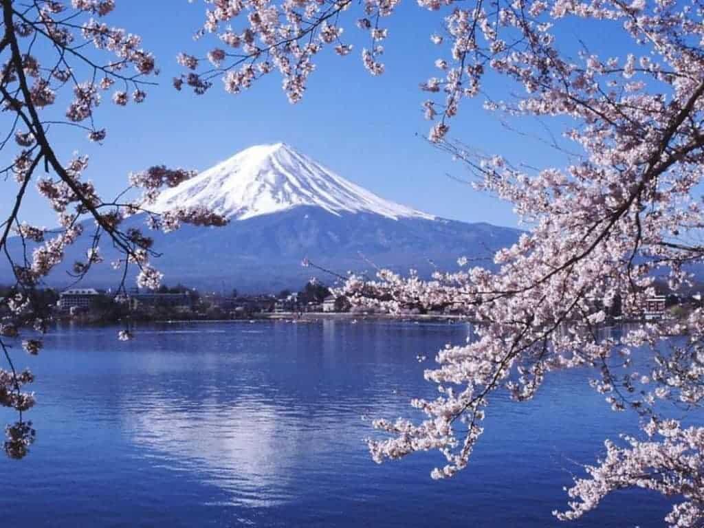 Paket Tour Wisata Jepang Musim Sakura 29 Maret - 3 April 2018 7